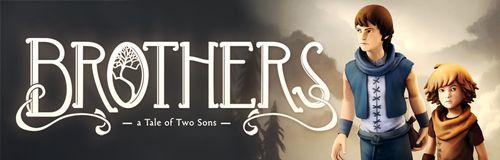 ブラザーズ 2人の息子の物語